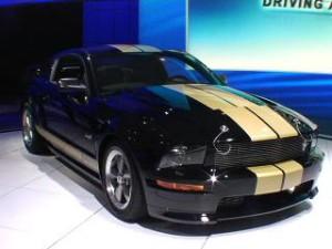 Auto Show de Nueva York 2016: Ford Shelby GT-H 2016, Sólo disponible de alquiler en Hertz